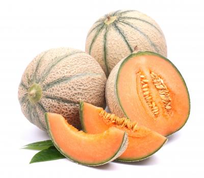 melón y la sandía
