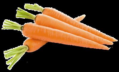 vegetales de raíz