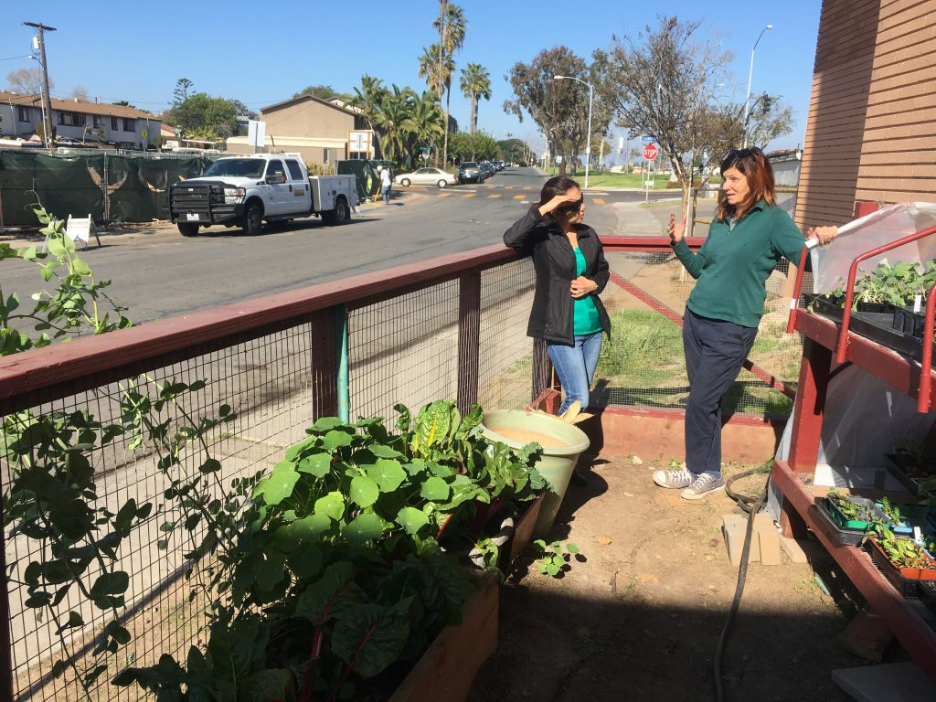 Linda Vista Market Owner Talking with Farmer Amy